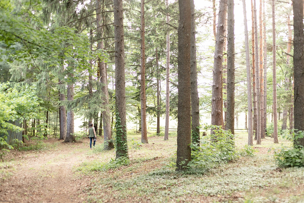 Woman walking through bright forest