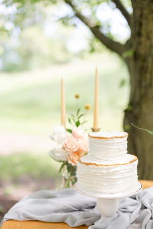 cake reception in the details byron center truer design