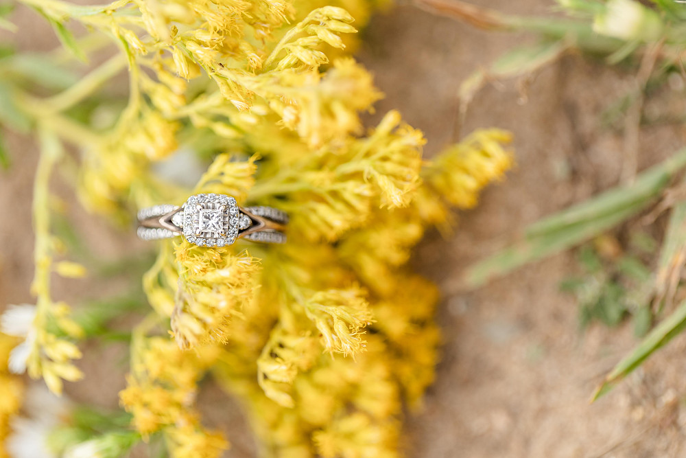 Engagement Ring on ground and yellow flowers Al Sabo Land Preserve Kalamazoo Michigan