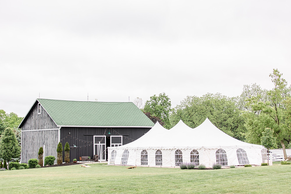 Josh and Andrea wedding photography husband and wife photographer team michigan pictures hydrangea blu barn ceremony