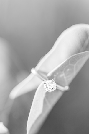 Engagement Ring on leaves Al Sabo Land Preserve Kalamazoo Michigan
