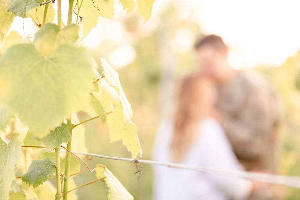 Engagement photos Round Barn Winery Baroda Michigan vineyard leaves