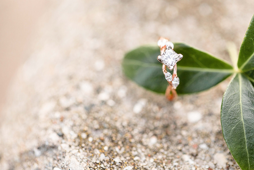 beautiful custom designed Engagement ring on green leaf Tunnel Park Beach Holland Michigan