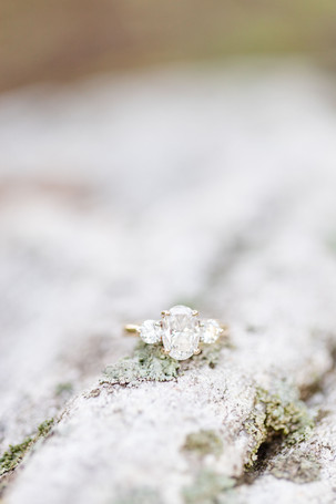 engagement ring on mossy rock