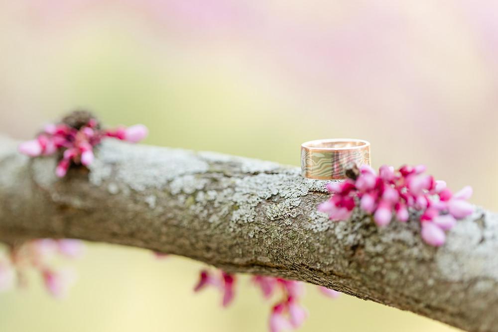 Engagement Photos Van Buren State Park Engagement Ring Sitting on Branch Purple Blooming Tree