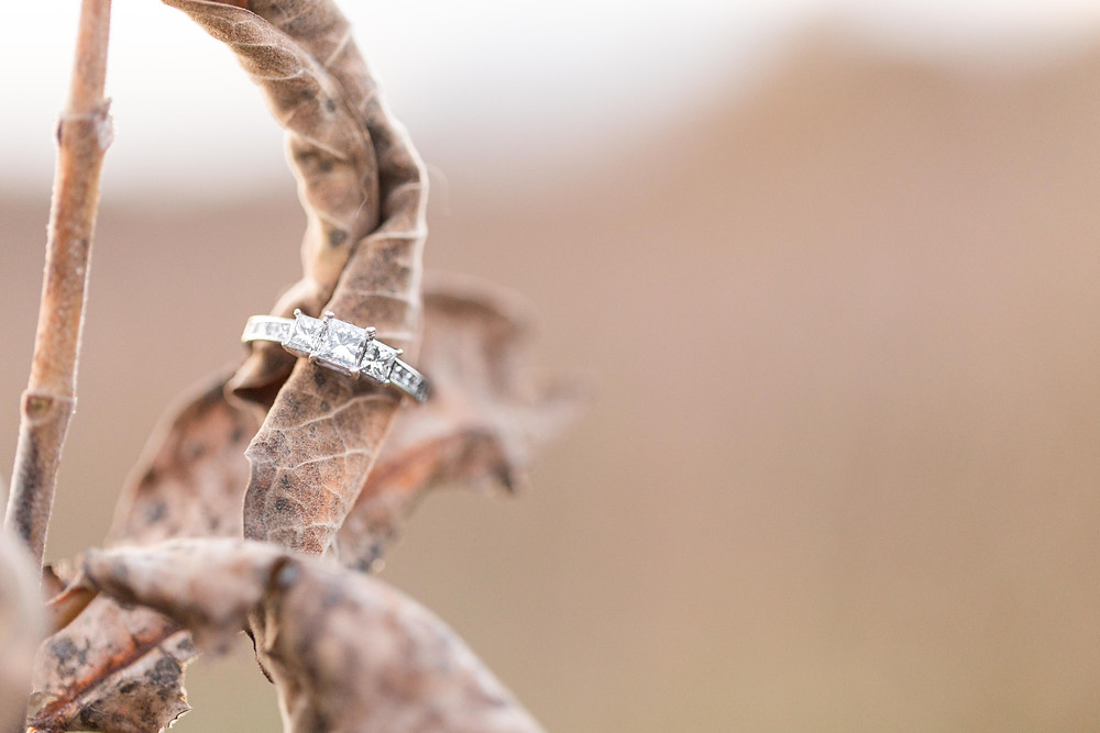 Josh and Andrea Photography engagement ring Al Sabo