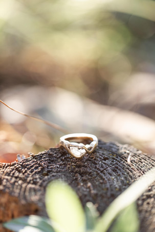 ring shot woods provin trails Grand Rapids engagement session