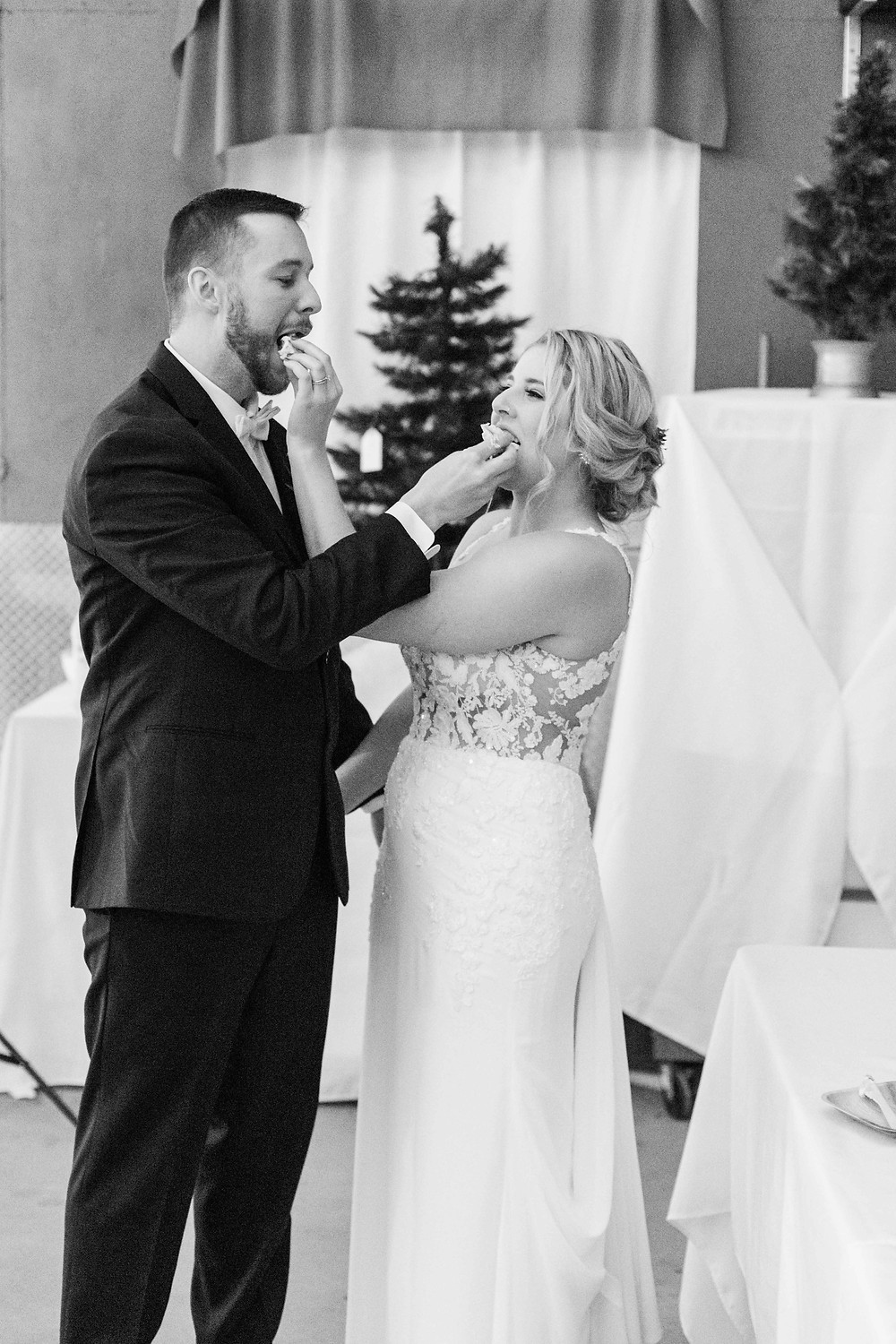 josh and Andrea photography husband and wife team michigan winter reception cake cutting