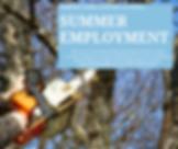 summer employment.png