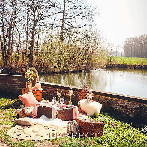 luxe picnic.jpg
