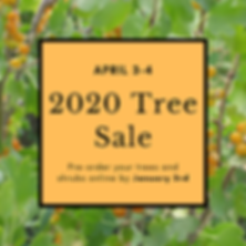 Tree Sale Currant Website 10.2019-2.png