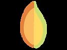 YCCN logo.png