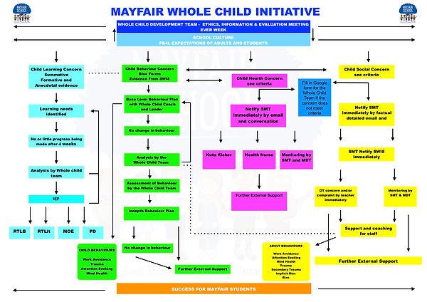 whole child initiative multi disciplinar