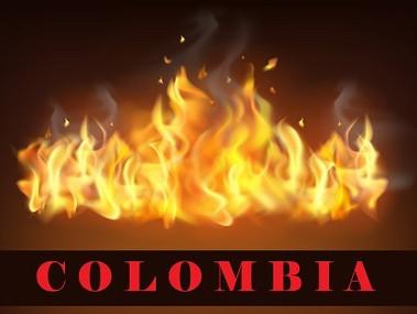 CIDH visitará a Colombia en contexto de protestas sociales