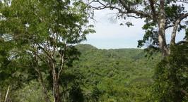 Con 150 hectáreas en Luriza amplían conservación de fauna y flora: CRA