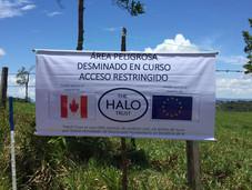Horror: 1.614 víctimas de minas antipersonal desde 2012