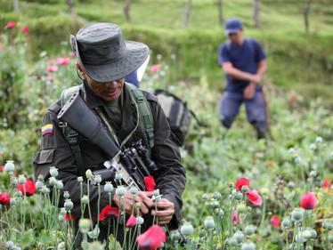 COCA... cocaleros y narcos: realidad de país
