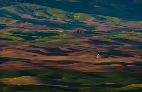 Palouse Farmland, Washington