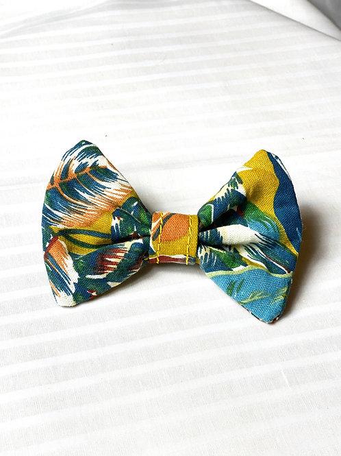 """Noeud papillon pour chien """"Colorful Jungle"""""""