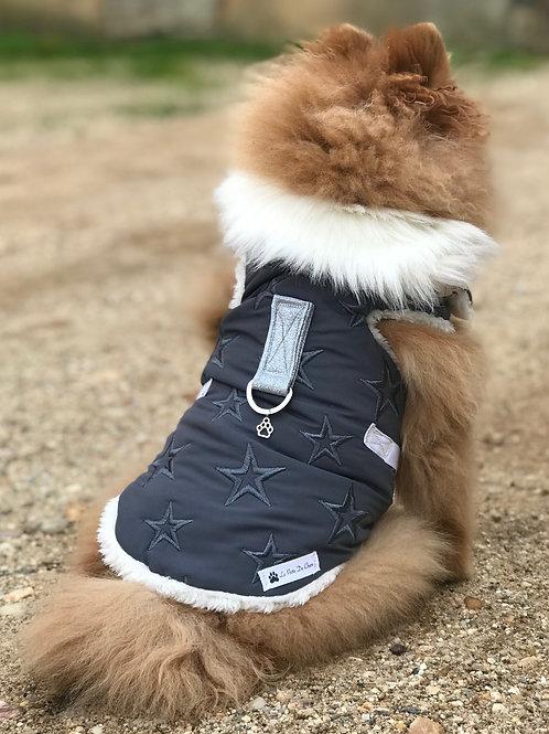 """Harnais / Manteau  pour chien  """"Stars"""""""