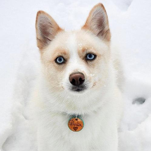 Médaille pour chien gravée pailletée et personnalisable