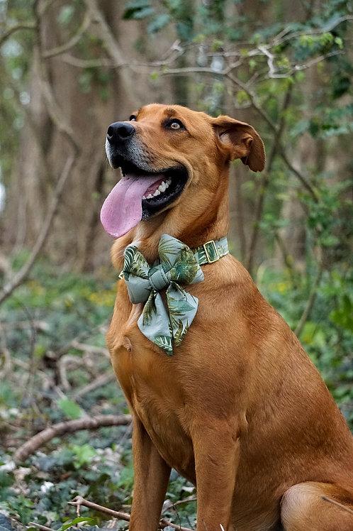 """Noeud papillon pour chien """"Green Jungle"""""""
