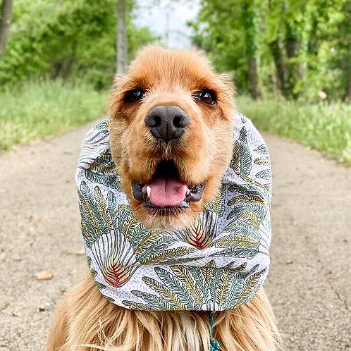 Snood pour chien