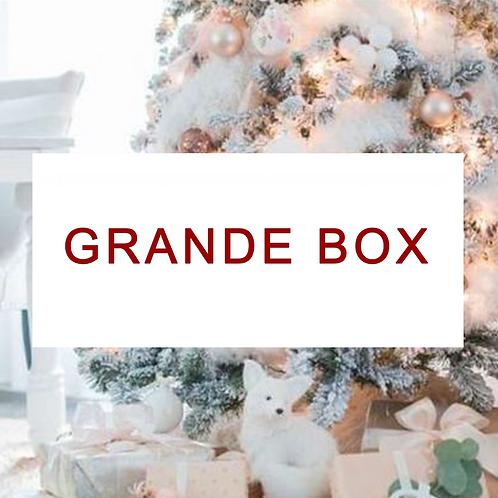 Grande box de Noël pour chien