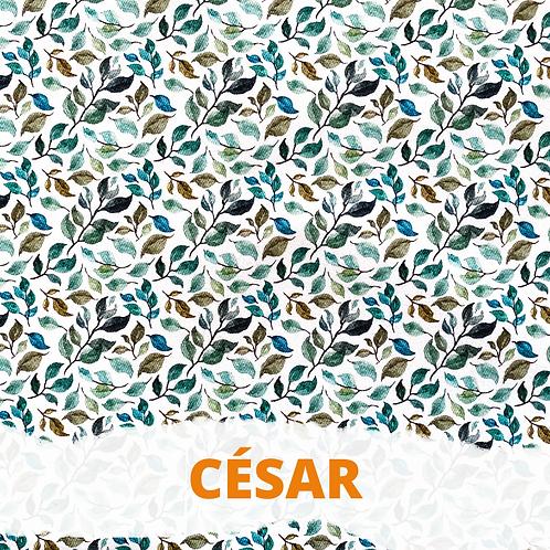 """Noeud papillon Moyen """"Cesar"""" pour Riya"""