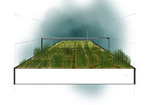 Monoculture - concept 02 - During.jpg