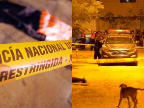 ASESINAN A POLICÍA QUE PRESTABA SERVICIOS EN EL CONGRESO DURANTE ROBO EN SJL
