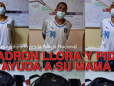 VIDEO | LADRÓN FUE CAPTURADO Y LLORA PIDIENDO AYUDA A SU MAMÁ