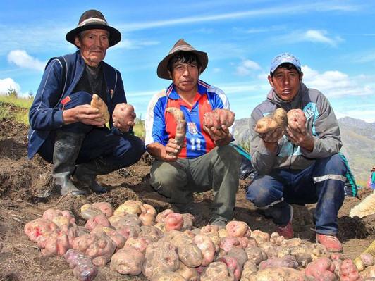 BOLIVIA CIERRA SUS FRONTERAS A PRODUCTOS PERUANOS PARA SU MERCADO