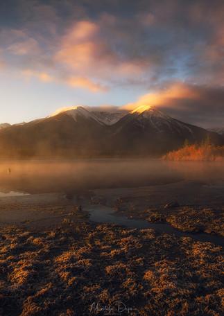 """Sunrise Fog"""