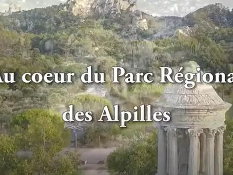 Les résidences Bleu Lavande : à deux pas du Parc naturel régional des Alpilles ...