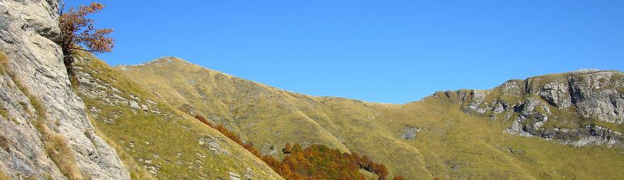 Monte Fiocca in libertà