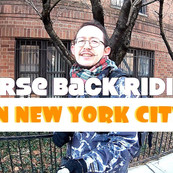 Horse Back Riding in New York City