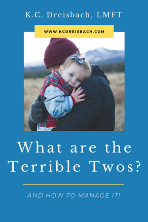 What are the Terrible Two's &  How to Manage It