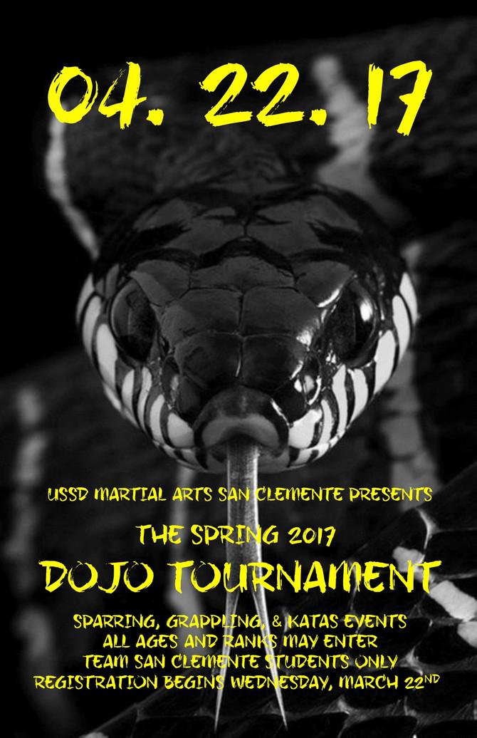 Spring 2017 Dojo Tournament!