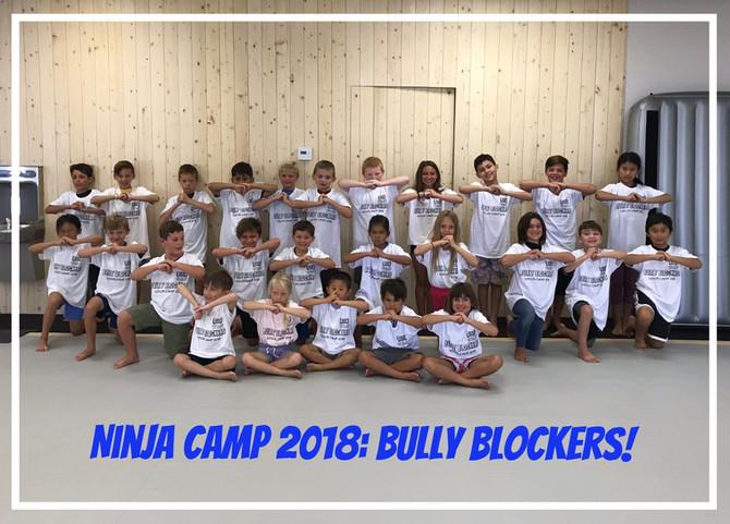 Wrapping Up Ninja Camp 2018