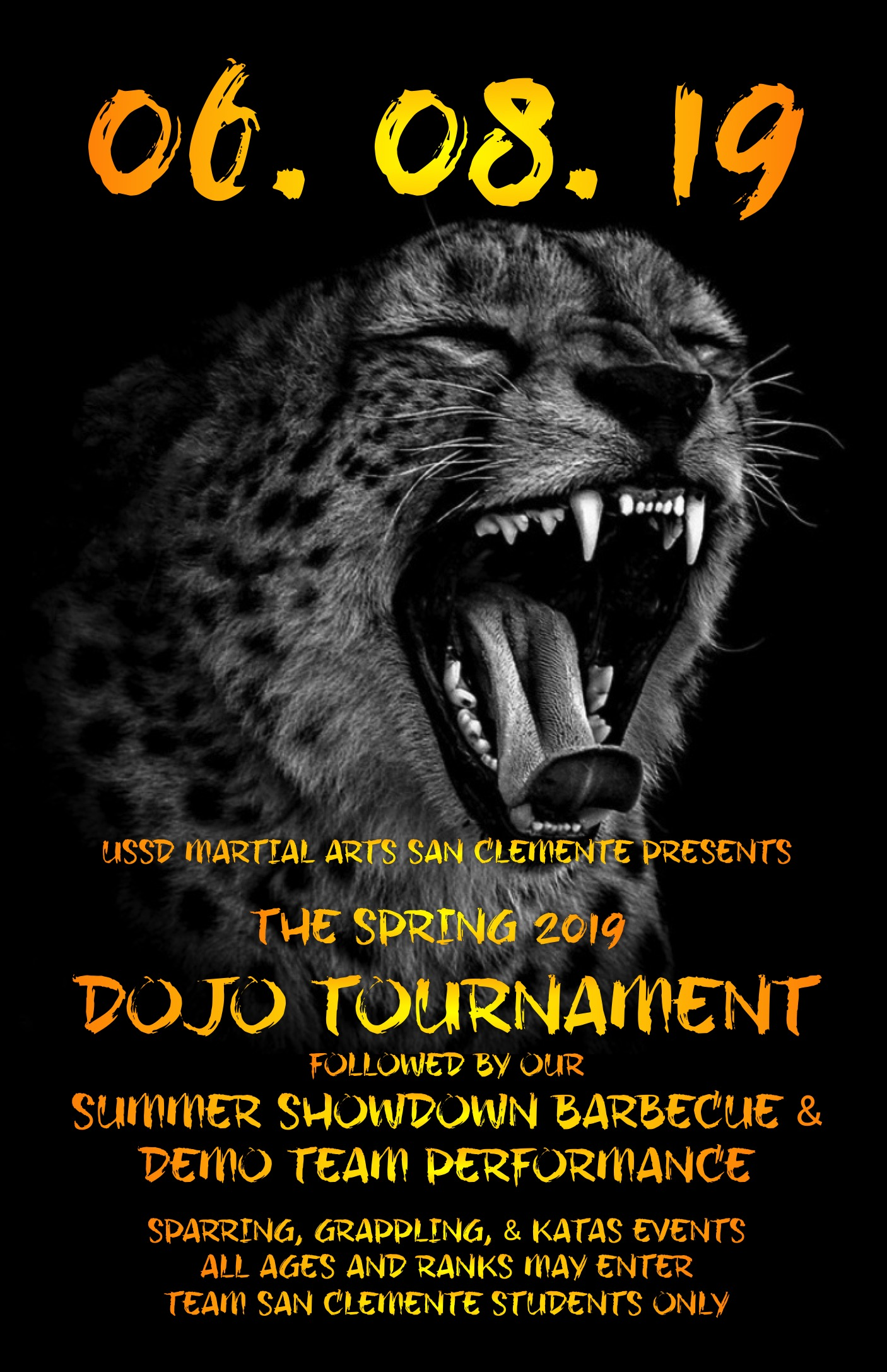 UPDATED*** Spring 2019 Dojo Tournament & Barbecue