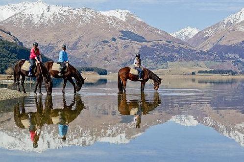 퀸즈타운 말과 함께 산맥을 걷는 승마투어