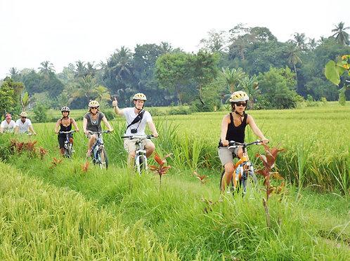 발리 로컬마을 자전거여행