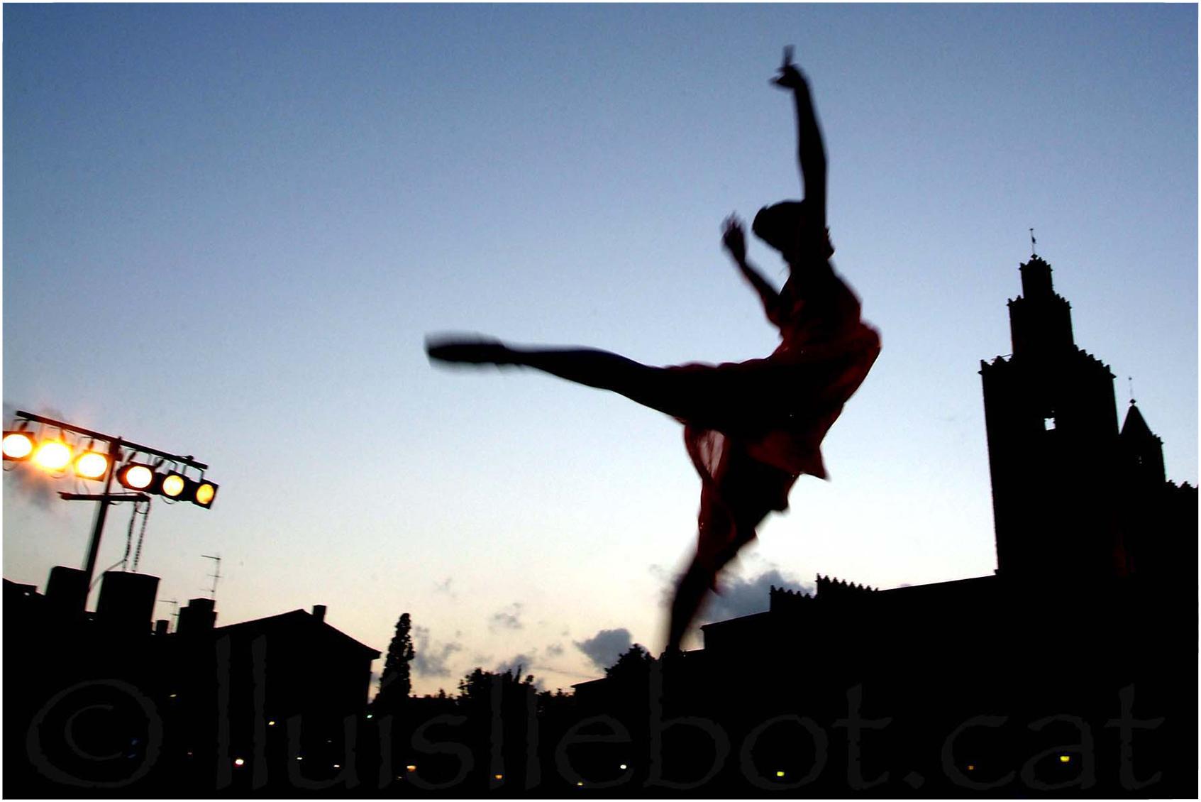 danza dansa