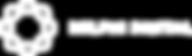 white horizontal vector.png