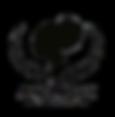 AVSArtboard%25201_edited_edited.png