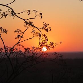 Wilderness Wisdom: Authenticity, A Walk Of Truth
