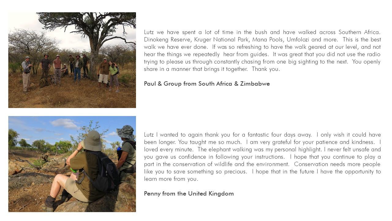 walking safari, safari, kruger park