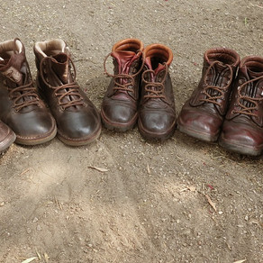 Walking Safari:  Boot Choices