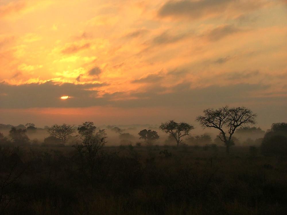 sunrise, walking safari, walking safaris, kruger park walking safari, african safari, luxury safari, tailor made safari,